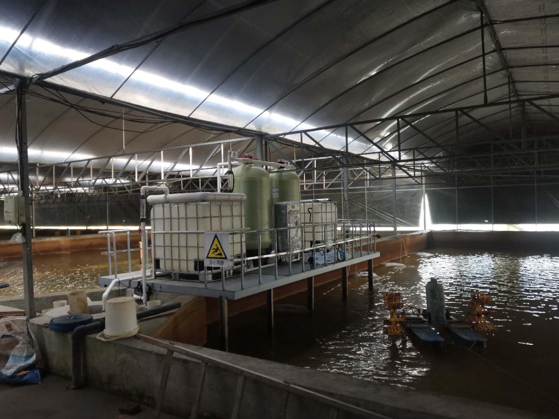 工厂化养殖循环水项目